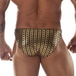 Egyptian Gold Fabric Brief